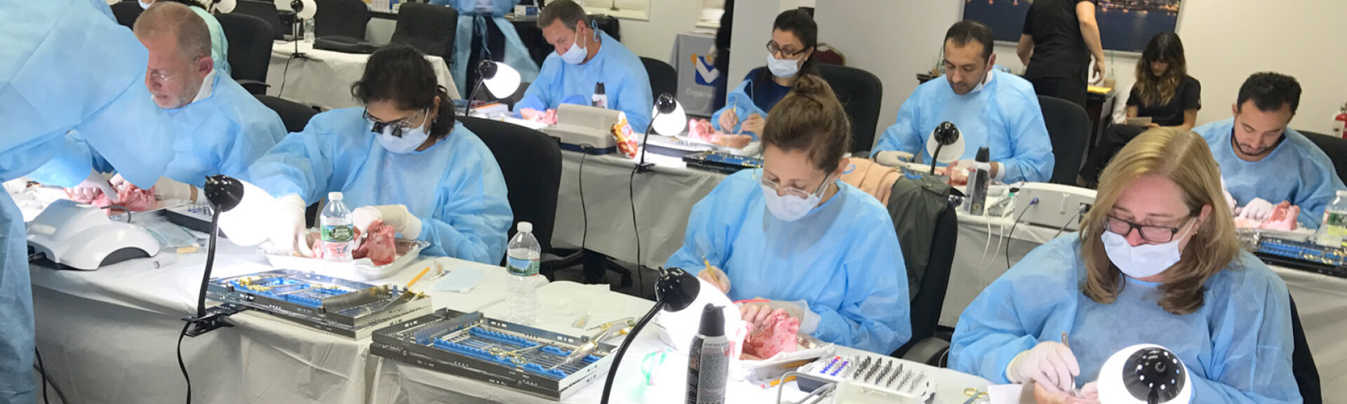 dental students practicing procedure on pig jaws